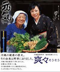 SouSou fermented extract_3