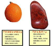 Lycopene melon sole sheets_2